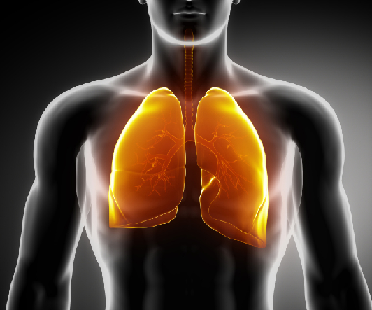How Healthy Are Your Lungs? Take the Test