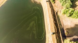 rio tinto tailings dams