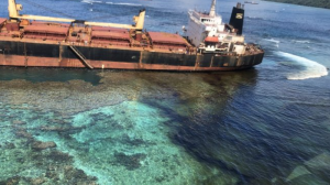 Environmental damage by the MV Solomon Trader