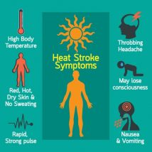 Infographic identifying symptoms of heat stress and poor hydration
