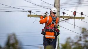 Energy safety victoria will aim to protect electrical line workers