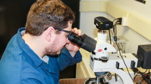 coal dust research on effects of nano particles