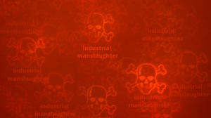 industrial manslaughter laws queensland